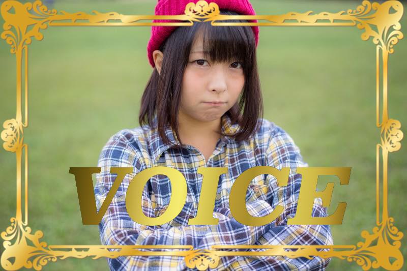 714-voice-the-complete-guide-to-fuguring-out-okoru-shikaru-donaru
