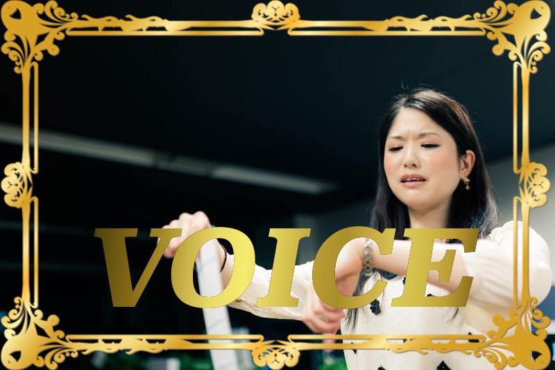 1120-voice-most-effective-ways-to-use-zuibun-totemo-and-kanari