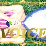 1123-voice-156-ways-to-explain-personalities-part1