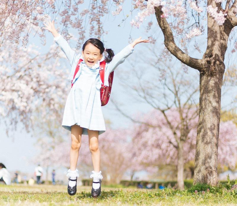 effective-usage-guide-of-seityou-growth-progress-learn-japanese-online-how-to-speak-japanese-language-for-beginners-basic-study-in-japan